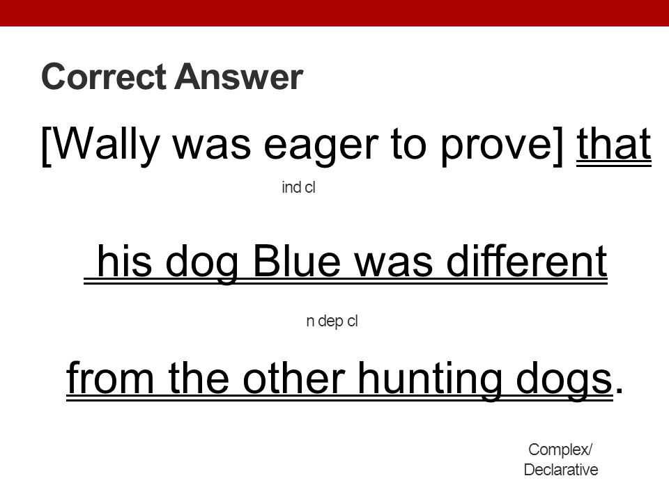 Correct Answer [Wally was eager to prove] that his dog Blue was different from the other hunting dogs.